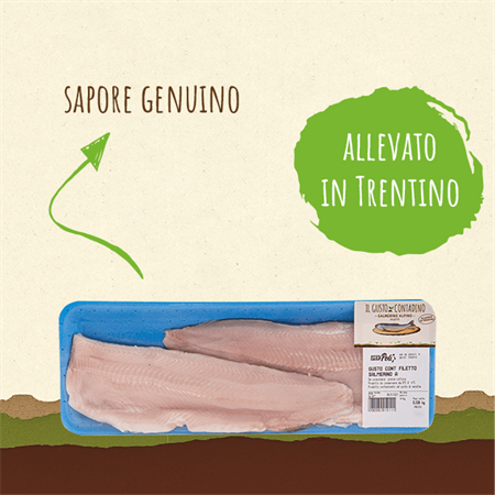 <STRONG>SALMERINO ALPINO</STRONG><BR>FILETTO