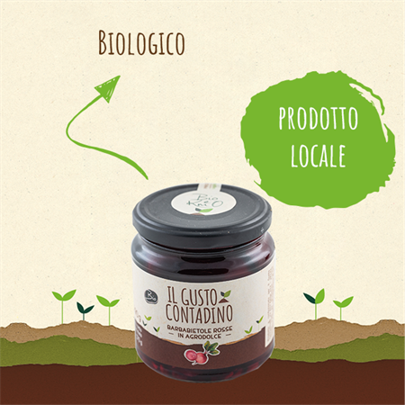 <strong>BARBABIETOLE ROSSE</strong><br>IN AGRODOLCE